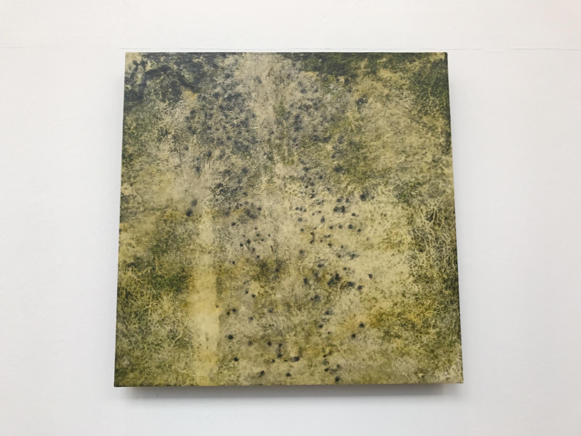 Part of Shirri by Rose-Marie Huuva